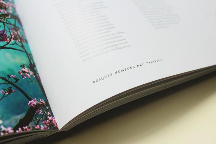Arboles Magicos精美画册设计