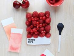 emilie de griottes:pantone食物色彩卡