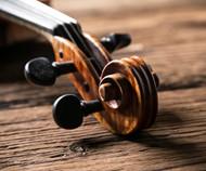小提琴局部图片