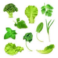 绿色蔬菜矢量图