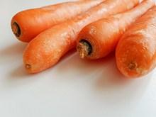 美味多汁红萝卜图片素材