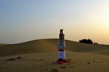 瑜伽倒立动作图片