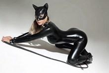 猫女郎皮裤美人性感精美图片