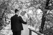 复古黑白婚纱写真背影高清图