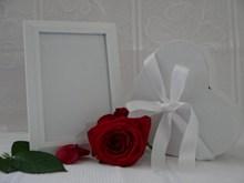 情人节玫瑰礼物图片大全