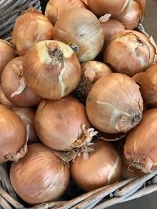 新鲜洋葱蔬菜图片素材