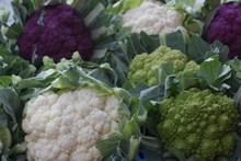 营养花菜图片下载