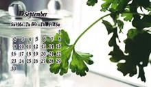 9月小清新日历高清图