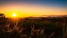 清晨日出景观高清图片