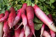 红色萝卜蔬菜图片大全
