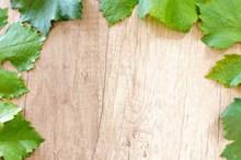 绿叶边框木纹背景图片下载