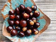 棕色板栗坚果精美图片