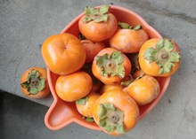 成熟甜柿子高清图