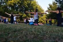 公园练瑜伽图片下载