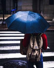 一个人撑伞背影图片下载