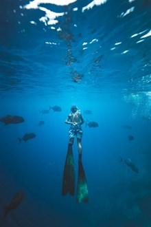高清海底潜水高清图片