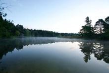 清晨绿色湖泊图片下载