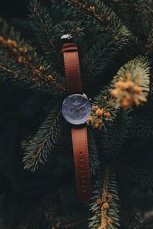 女款皮带手表高清图片