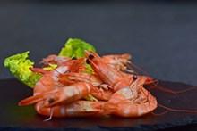 美味海鲜虾图片下载