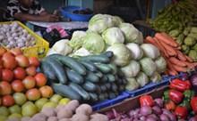 蔬菜摊新鲜蔬菜图片下载