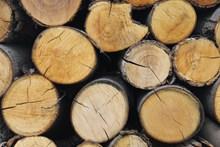堆叠木材特写图片素材