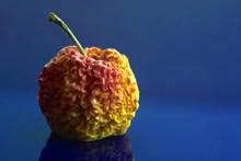 干苹果静物图片