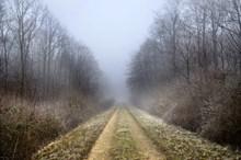 冬季森林山路景观图片素材