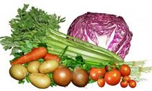 营养健康蔬菜图片素材