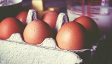 鸡蛋包装图片素材