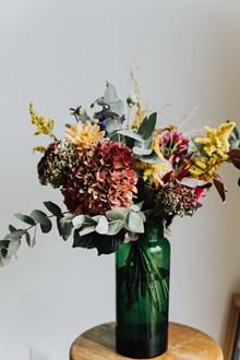 室内水培花卉图片下载