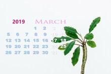 2019年3月份日历图片素材