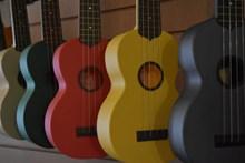 多色吉他乐器图片下载