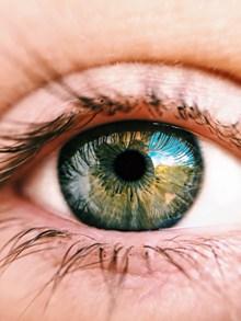 人的眼球特写高清图片