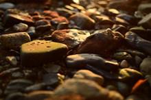 夕阳下的石子图片下载