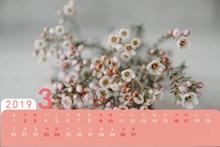 2019年3月日历图片