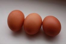 食用新鲜鸡蛋图片下载