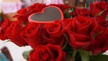 红色爱情玫瑰花图片