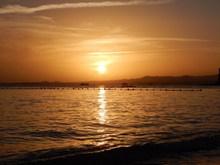 海面日落波光图片