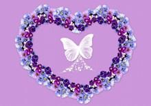 潘茜花紫色背景图片下载