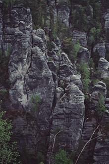 黑石林高清图片