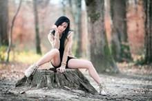 成人美女人体艺术摄影 金色毒蛇大全图片大全
