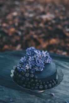 蓝莓水果鲜花蛋糕高清图片