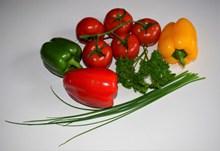 番茄青椒蔬菜图片下载