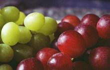 新鲜大葡萄图片素材