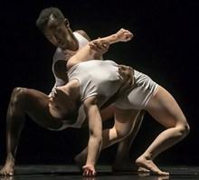 双人舞人体艺术图片大全