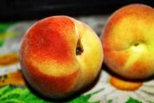 新鲜桃子特写图片大全