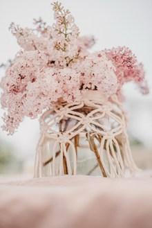 粉色唯美水培花朵图片下载