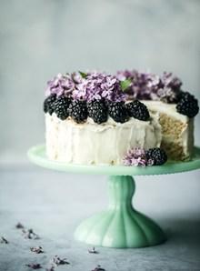 桑葚奶油蛋糕 桑葚奶油蛋糕大全图片