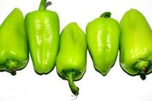 绿色青椒蔬菜图片大全