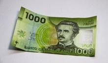 千元歐元紙幣圖片素材